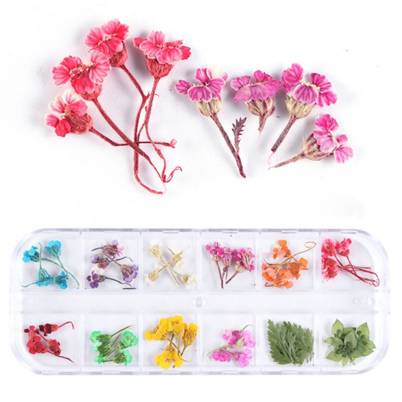 1 Box Crystal Epoxy Filler Dry Flower Handmade Flowers DIY Craft Silicone Molds UV Resin Filling Material Decoration Accessories