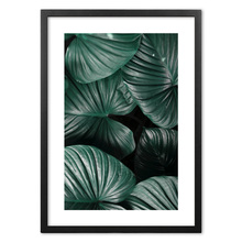 Monstera Botanical Plants Wall Art Print paper Painting Nordic Posters And Prints Picture For Living Room Decor