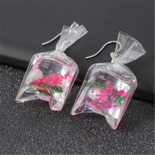 Fashion creative transparent candy marine wind conch earrings female personality resin dried flower plant ear jewelry