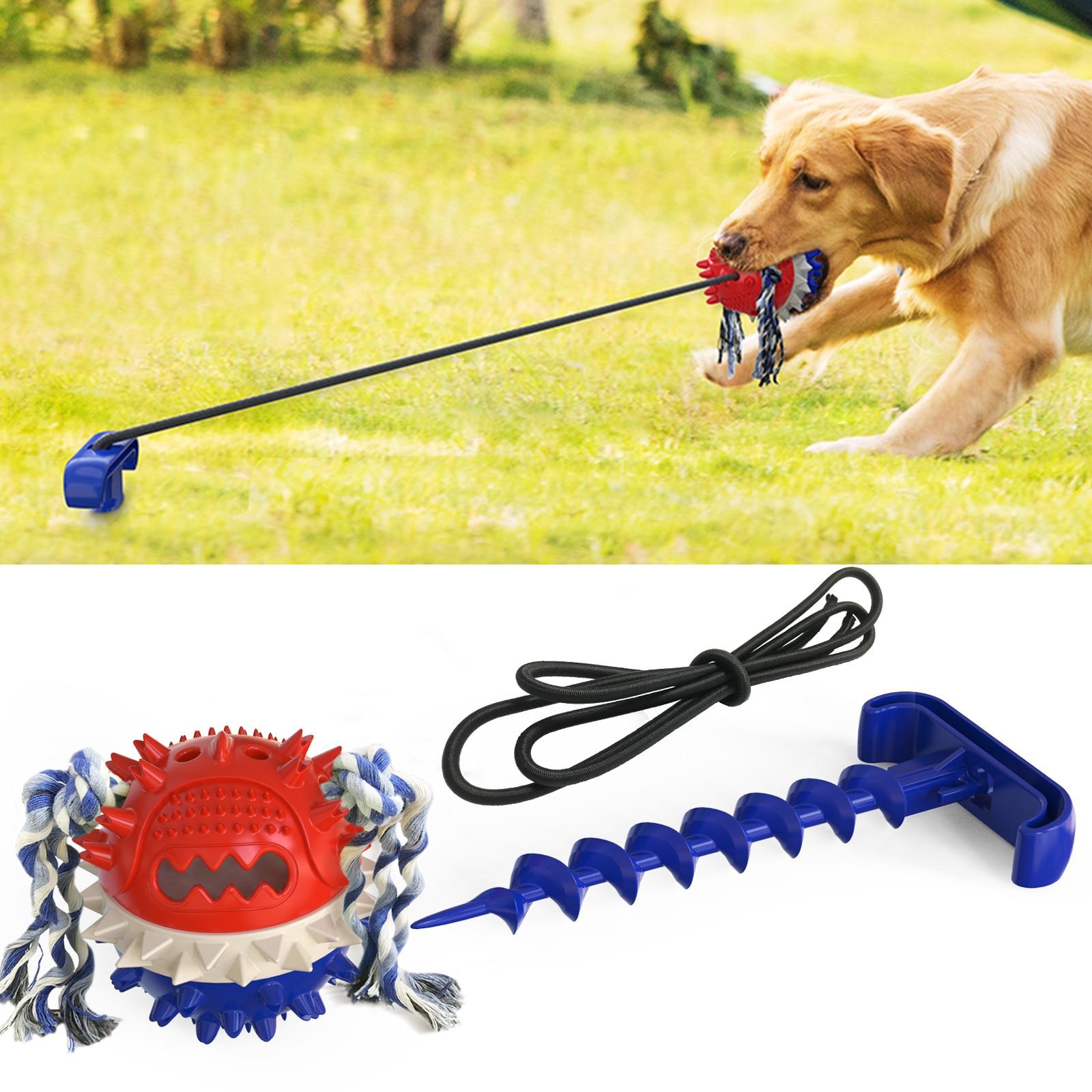 dog tug of war toy