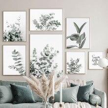 Eukaliptusa gumowe zielone liście roślin płótno artystyczne malarstwo Nordic plakaty i druki nowoczesne zdjęcia ścienne dla wystrój salonu