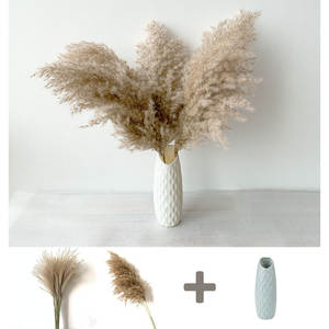 pampas grass decor dried flowers with plastic vase natural pampas grass feather flowers fluffy wedding flowers bunch home decor