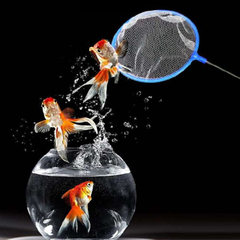 5 Pcs//Set Fish Net Artemia Filter Shrimp Mini Portable Fishing Fish Tank Aquarium Dense Mesh Small Pore Tool