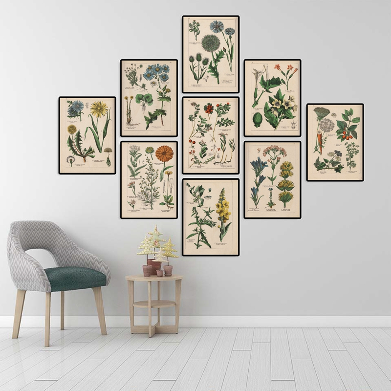 Botanical Collection Vintage Posters and Prints Herbs 1898s Russian Language Wall Art Pictures Canvas Painting Home Wall Decor