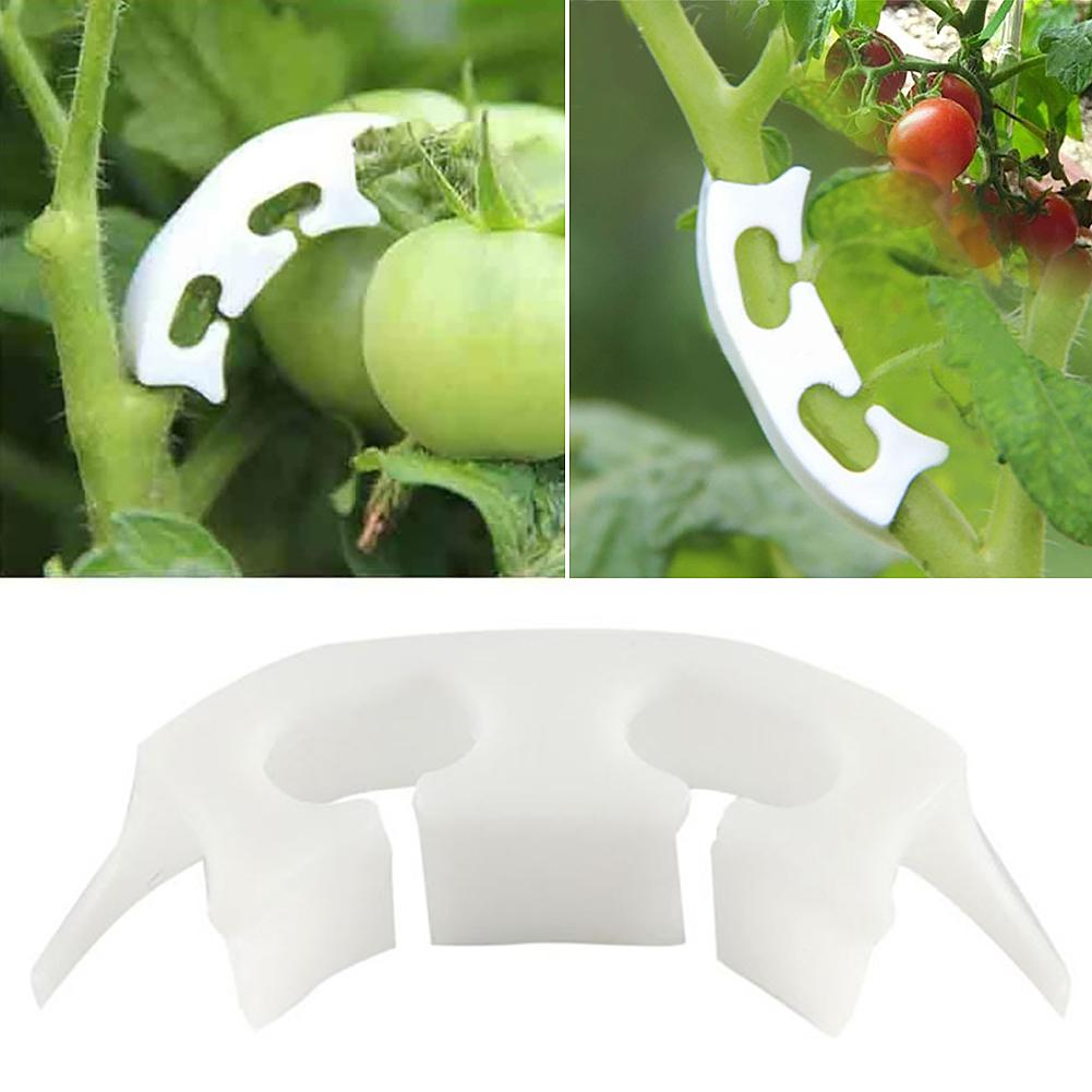 100Pcs Plant Vine Seedlings Grafted Retaining Clips Garden Tomato Support Tool Tomato Clips Connect Pepper Trellis