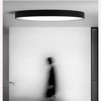 AC220 900LM LED Balcony Ceiling Light White 3000 6000K Simple Fashion Aisle Light Is White Warm White 12W Lamps Living Room