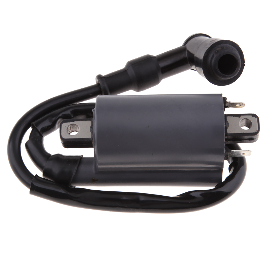 High Performance Motorcycle Ignition Coil For Buyang Feishen Linhai 260 260cc 300cc D300 G300 ATV
