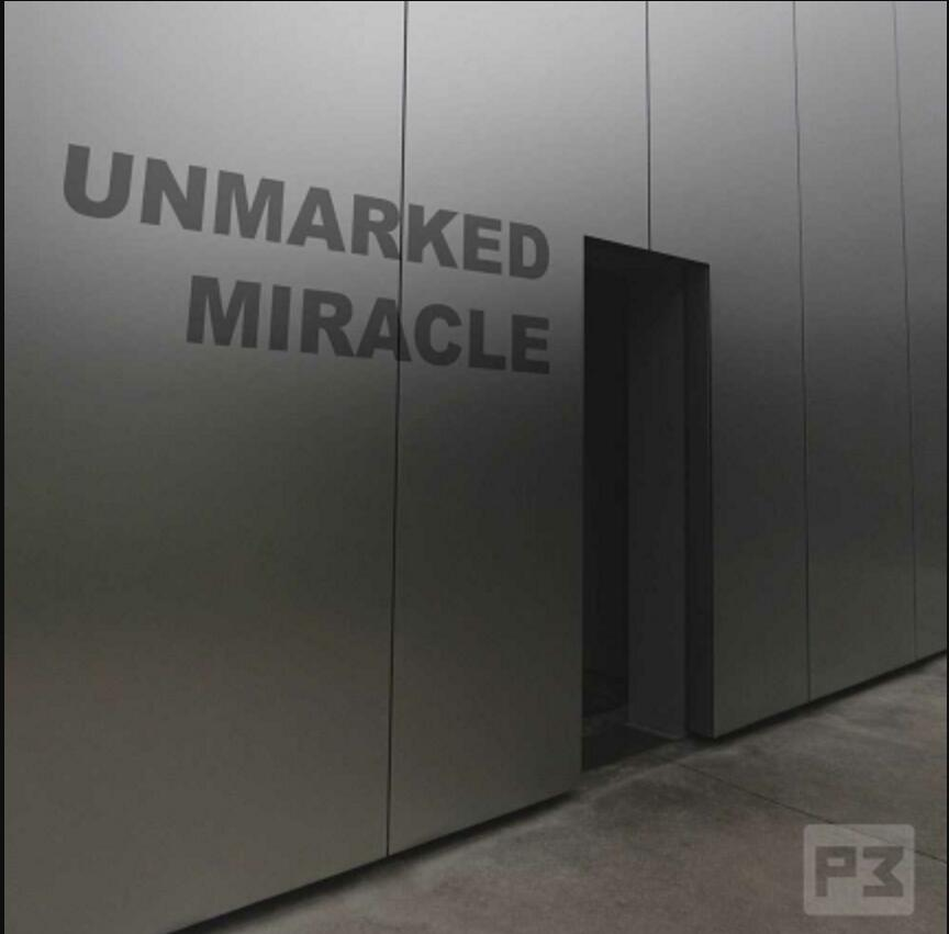 Unmarked Miracle By Paul Wilson , Magic Tricks (no Props)