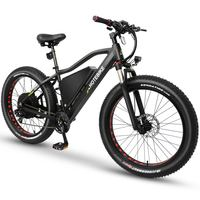 2000W powerful fat tire electric bicycle with 18AH battery Snow eBike