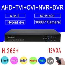 1 Blu-Ray Shippin P/960