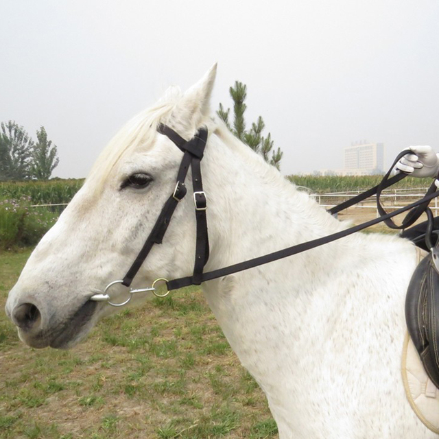 Horse Bridle Rein Headstall Thickened Halter Equestrian Accessories With Removable Snaffle  2