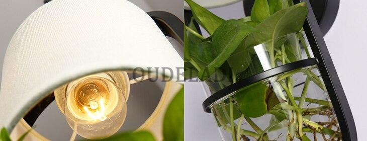 e14 hidroponia plantas suculentas arandela