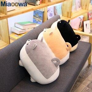 Image 4 - Yeni 40/50cm sevimli Shiba Inu köpek peluş oyuncak dolması yumuşak hayvan Corgi Chai yastık noel hediyesi çocuklar için Kawaii sevgililer günü