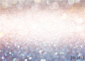 Image 2 - SHENGYONGBAO אמנות בד צילום תפאורות Facula אור ספוט גליטר תמונה נושא סטודיו אבזרי סטודיו רקע ZA19067 01
