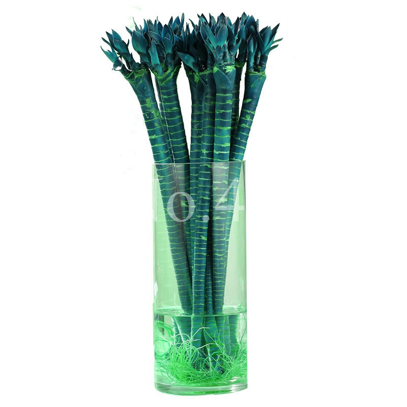 Time-Limit!! 10 Pcs Rainbow Lucky Bamboo Bonsai Small Potted Plants Purify Dracaena Plantas,Planting Simple For Home & Garden