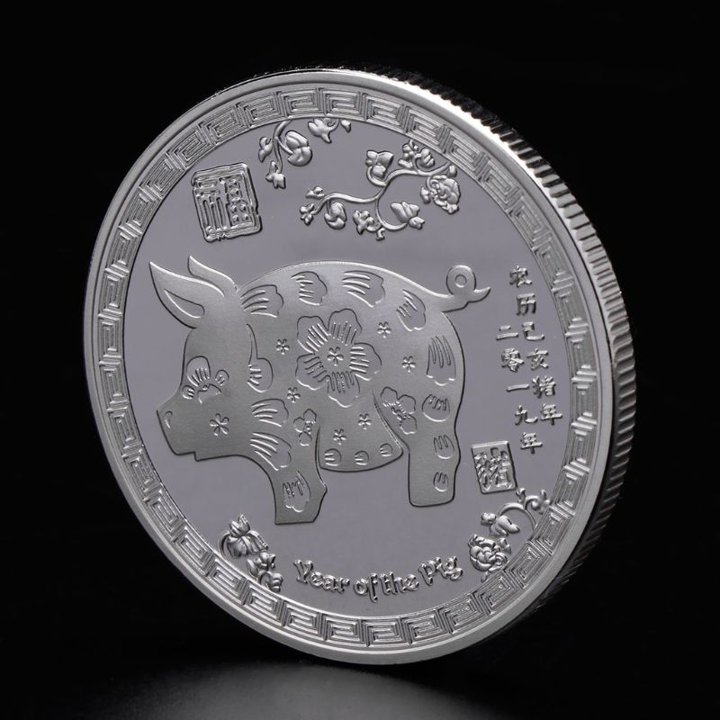 The year of the pig silver chinese zodiac 2019 anniversary coins souvenir coinRI