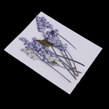 10pcs Natural Pressed Dried Flowers Sage Flowers For Scrapbooking Art Craft DIY Wedding Cards Phone Case Home Decors Purple