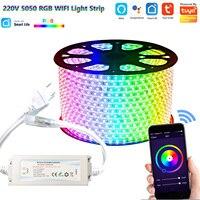 220V 230V Tuya Smart Leben SMD5050 RGB CCT LED Streifen Licht Wifi Stimme Contol Dimmer Outdoor Garten Lichter für Alexa Google Hause