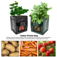 Gallon Potato Bag Garden Planting Bag Heavy Duty Gardening Bag for Yard Gardening Flower Pot