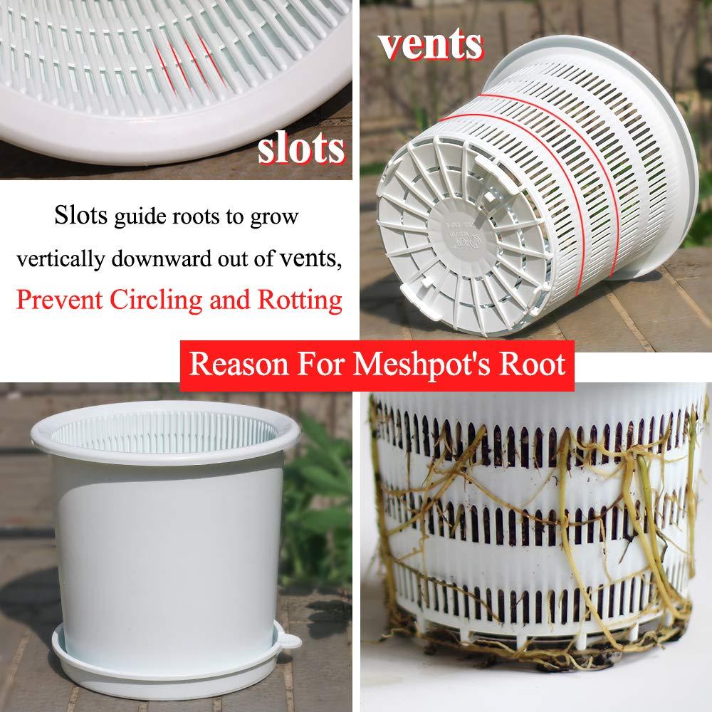 Image 3 - Meshpot 16 センチメートルプラスチック蘭の鉢穴ルート制御空気孔プランター 内釜、外鍋、トレイフラワーポット & プランター   -