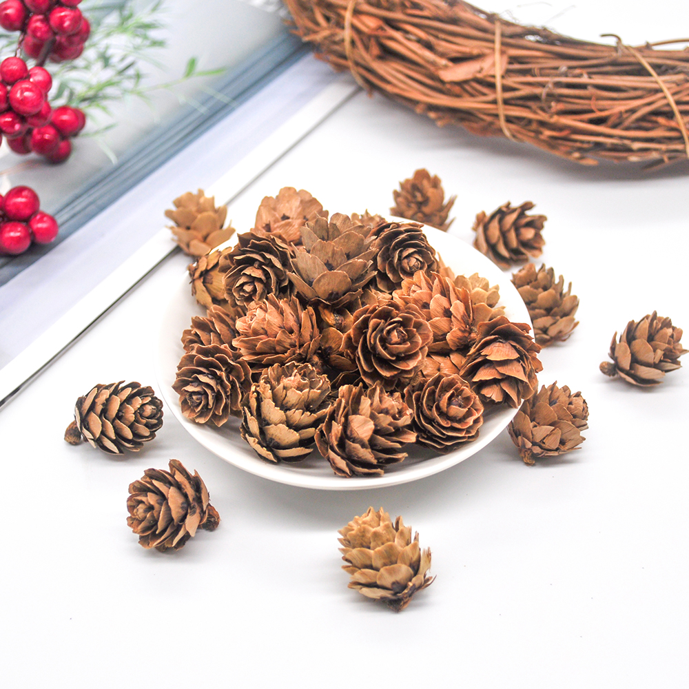 24PCS Natural Dried Pinecones Christmas New Year Holiday Party Decoration Christmas Decoration Vase Filler Home Supplies