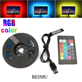 RGB 5050 taśma LED USB 5V wstążka elastyczne Led listwa oświetleniowa USB z mini 24 klawiszy pilot zdalnego oświetlenie tła do tv 5M