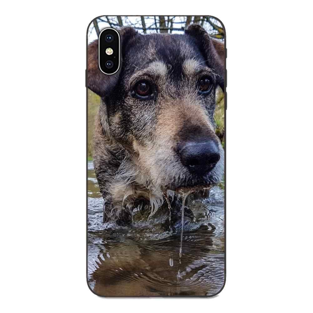 Hybride de luxe coque de téléphone Airedale Terrier Chien Art Pour Apple iPhone X XS Max XR 4 4S 5 5S SE 6 6S 7 8 Plus
