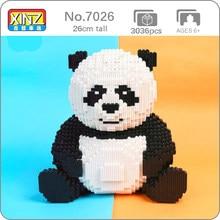 Xizai 8009 karikatür çin ayı kedi Panda vahşi hayvan Pet 3D modeli DIY Mini sihirli blokları tuğla bina oyuncak çocuk hiçbir kutu