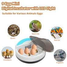 Автоматический инкубатор для птицы с 9 яицами светодиодный