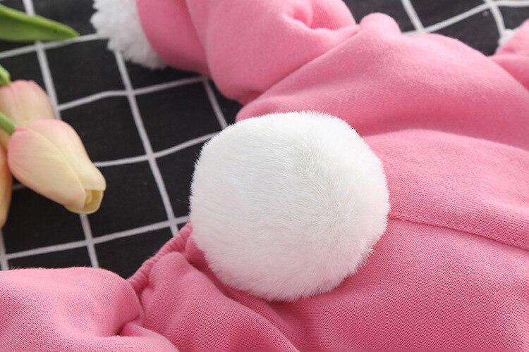 filhotes de natal roupas de páscoa chihuahua filhotes roupas de inverno