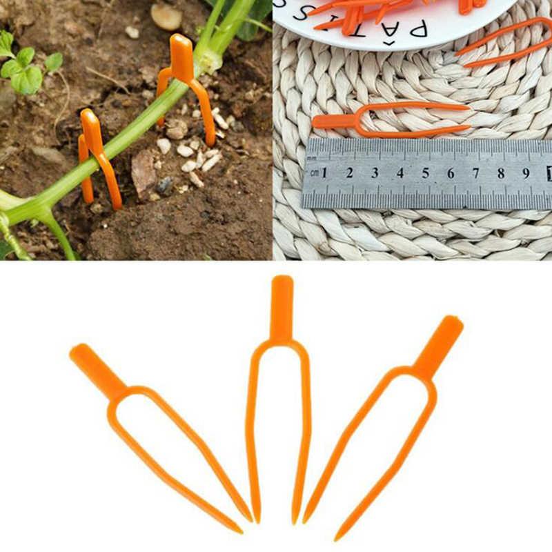 2020 tomate végétarien jardin plante Support Clips pour treillis ficelle serre outil presse semis fourchette plante vigne Fix fourchette