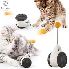 Забавная балансировочная машина для домашних животных медленная