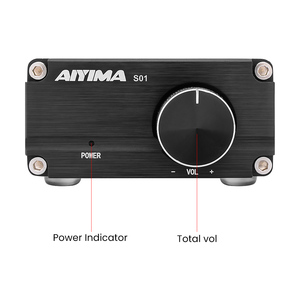 Image 3 - AIYIMA TPA3116 100W Subwoofer Audio Amplifier TPA3116D2 Mono Digital Power Amplifiers Amplificador With NE5532 OP AMP