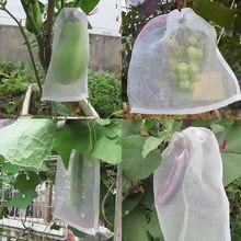 Ttplanet – Filet anti-insectes, Lot De 50 pièces, pour la Protection des Fleurs Et des Fruits, nouveauté 2021
