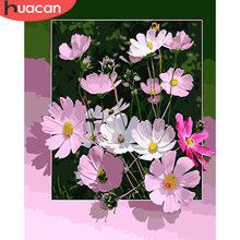 HUACAN-pintura por números de flores pintada a mano, Kits de lienzo de dibujo, bricolaje, decoración del hogar, colorear números, fotos de regalo