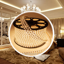 100m LED Striped Waterproof 220V IP65 6000 Ultra Bright Flexible 5050 SMD LED Outdoor Garden Home Kitchen Decor Strip Rope Light
