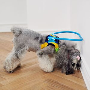 Image 4 - Blind Dogs Pet Safe Harness Anti collision Ring Pets Weak Color Guide Circle Animal Protection Collar Rings