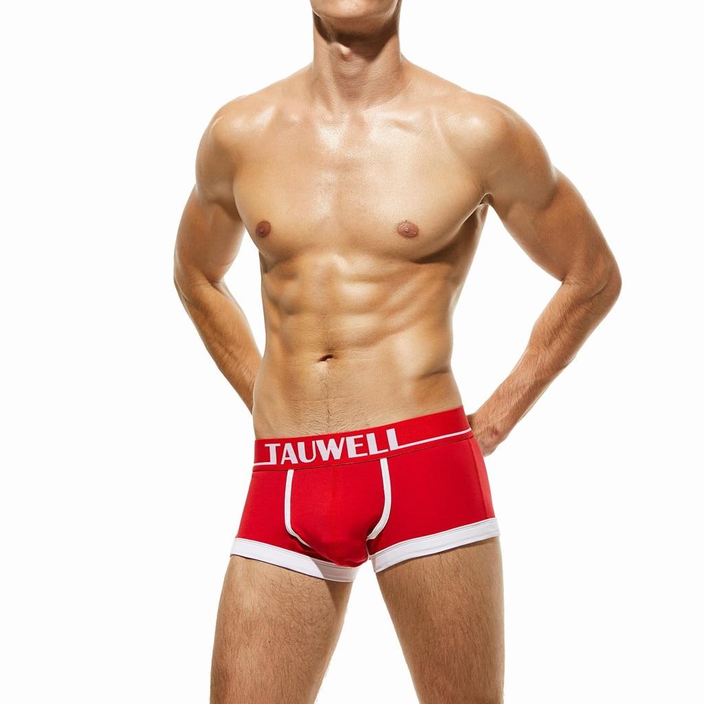Men's Sexy Underwear Straps Mesh Breathable Comfort Conjoined Sexy Underpant Comfortable men's underwear Ropa interior #JP