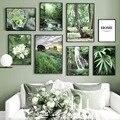 Зеленый лес трава водопад суккуленты художественная стена с цитатой холст картины Nordic Плакаты и принты настенные картины для Гостиная