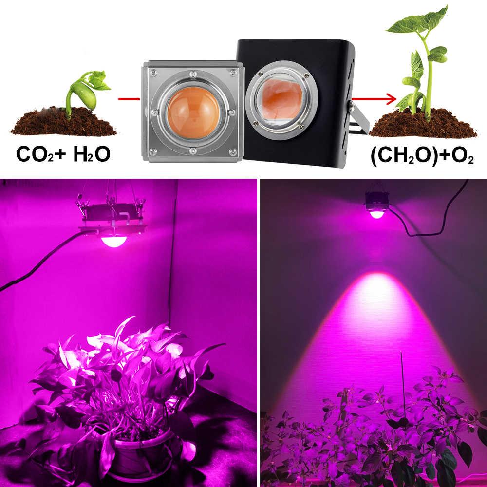 Spektrum Penuh Tongkol Tumbuh Cahaya 300W Tinggi Bercahaya Efisiensi Tumbuh Lampu untuk Tanaman COB Phytolamp untuk Indoor Tumbuh Kotak rumah Kaca