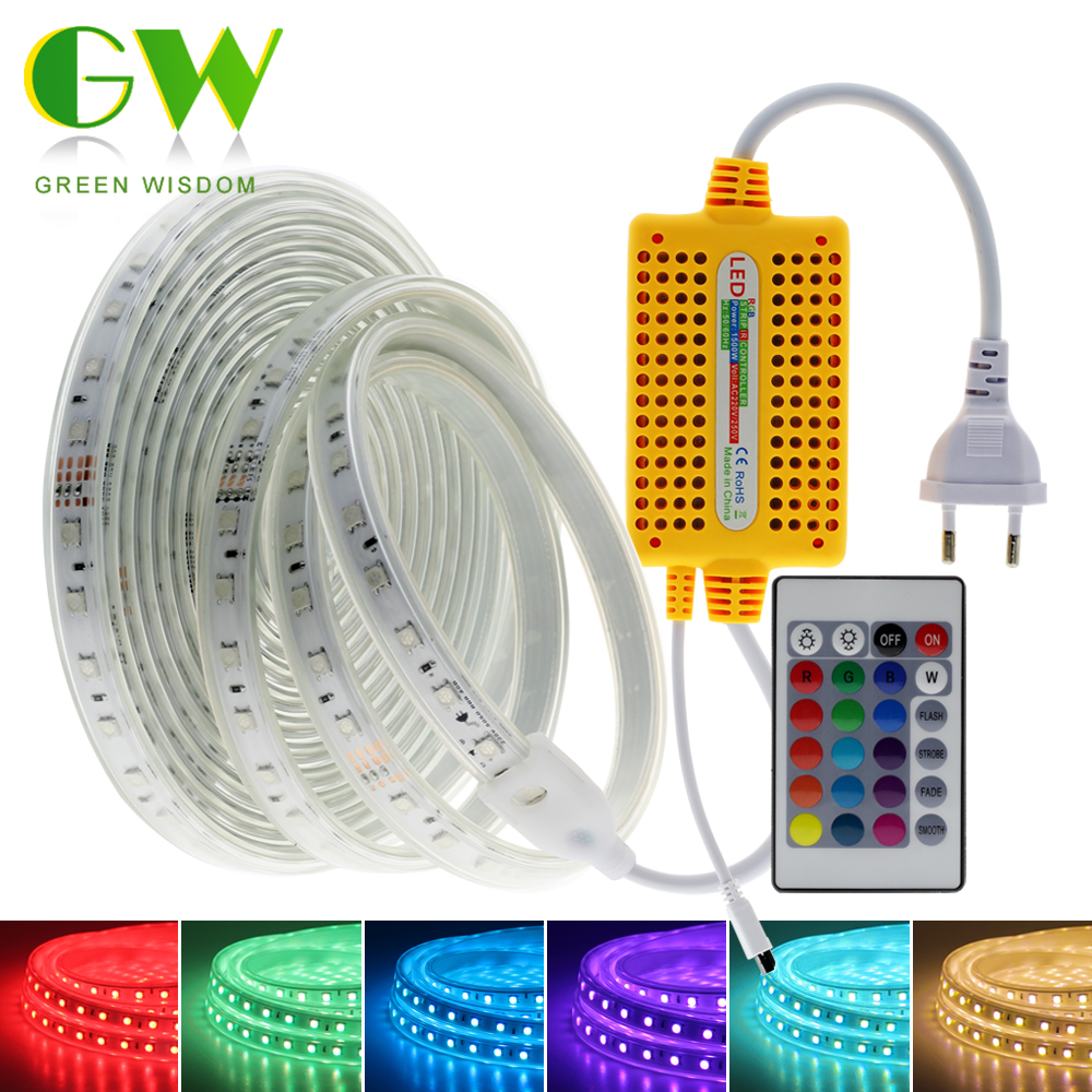 220V LED Strip Light 5050 RGB Neon Ribbon With 24 Keys Remote Controller Outdoor Waterproof RGB Tape Landscape Lights For Garden