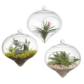 1Pc Cute Home Fashion Lantern Shape Clear Glass Flower Plant Hanging Vase Planter Crystal ball Container Wedding Garden Decor 1