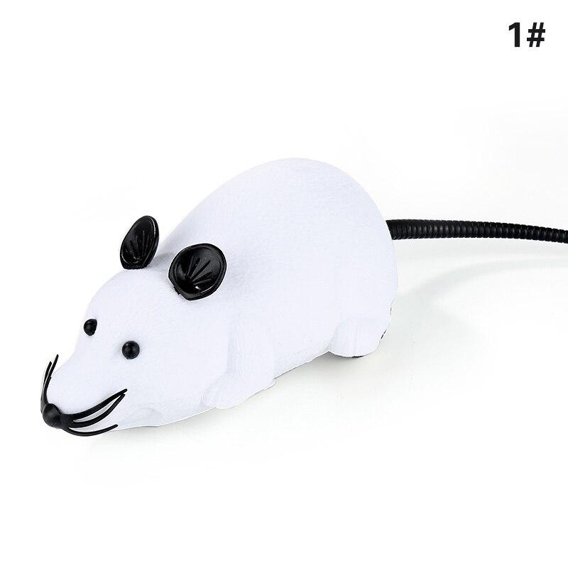 White black ears