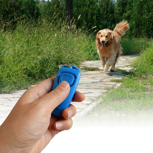 New 2 In 1 Cute Shape Dog Whistle Clicker Pet Dog Trainer Aid Guide With Key Ring Dog Training Whistle Dog Products Pet Supplies