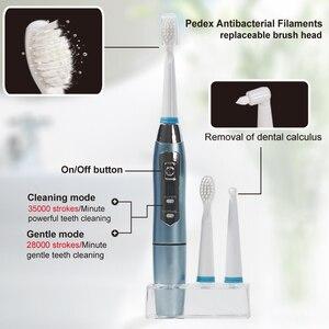 Image 3 - Seago Sonic Elektrische Zahnbürste Wasserdicht Männer Frauen Paar Batterie Zähne pinsel halter mit 3 Ersatz Pinsel Köpfe