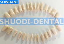 100% High Quality Model Dental Universal Plate Type Removable Teeth