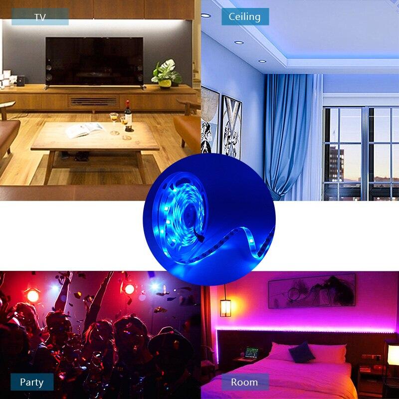 LED Strip DC12V RGB SMD 5050 2835 Ribbon LED Light Strip RGB Tape Flexible 5M 10M Diode Tape with WIFI Remote Backlight for TV (6)