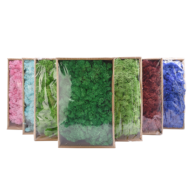 20g High Quality Artificial Moss Immortal Moss Simulation Green Plant Grass Home Decorative Wall DIY Micro Landscape Accessories