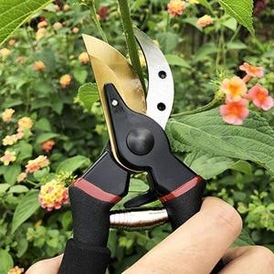 Image 5 - FIRMOR 剪定ばさみチタン剪定ばさみ剪定ばさみ手園芸植物はさみ枝トリマーバイパスツール