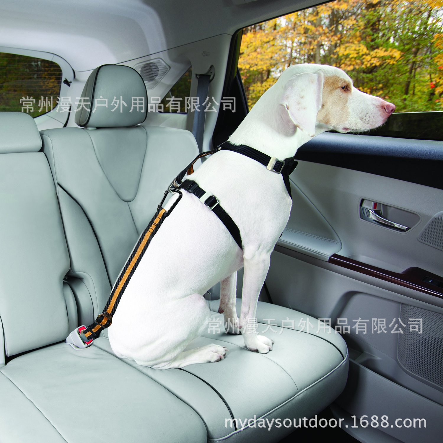 Sky Outdoor Pet Traction Rope Dog Training Rope Wear-Resistant Automobile Safety Belt Dog Leash Export